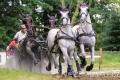 Milovníci koní si přišli na své v Nebanicích