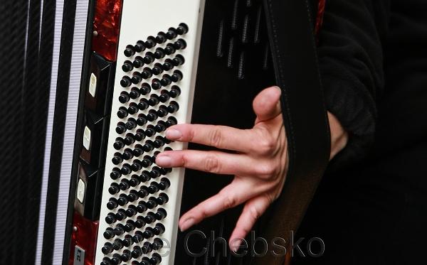 Akordeon harmonika koncert