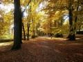 Park na Zlatém vrchu - foto: Jiří Pošmura
