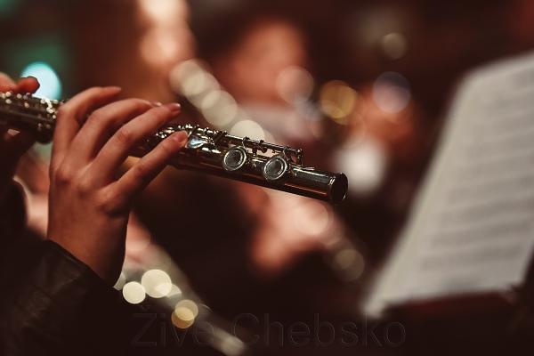 Koncert soutěž klarinet