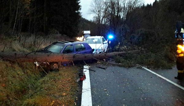 Nehoda Kraslice spadlý strom 1