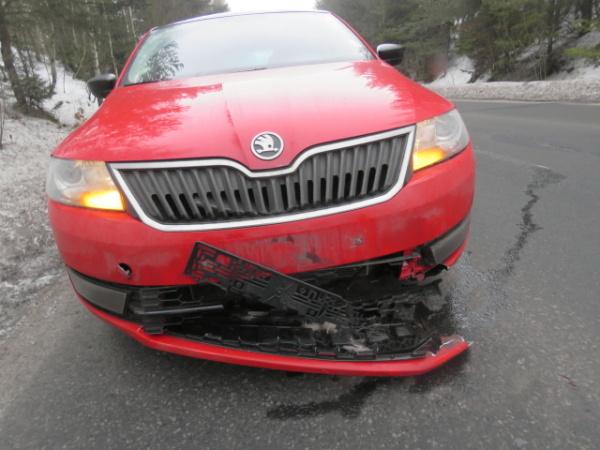 nehoda zvěř 1