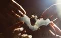 U Ferdinandova pramene se sešli milovníci netopýrů