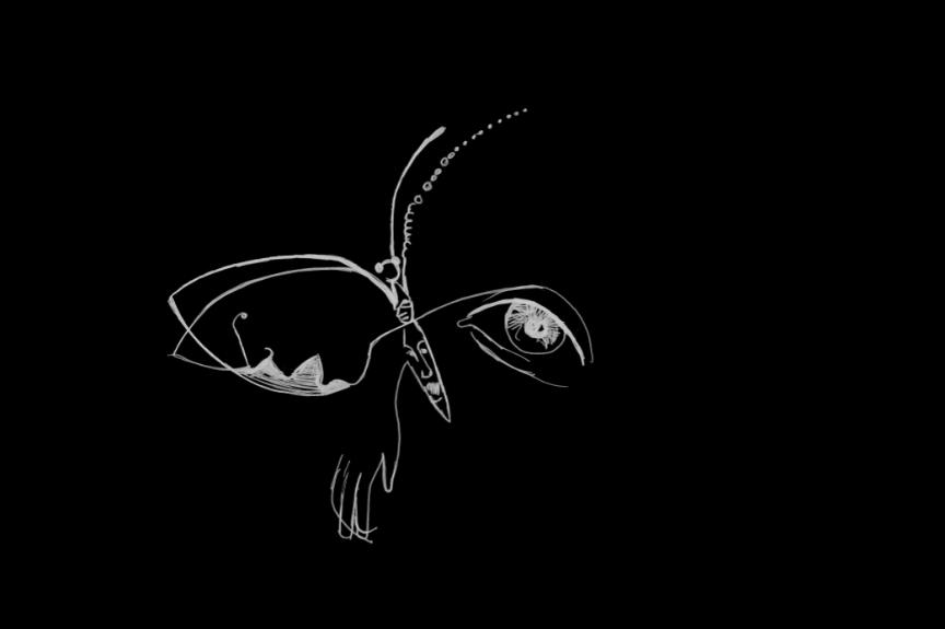 Petr batěk motýl