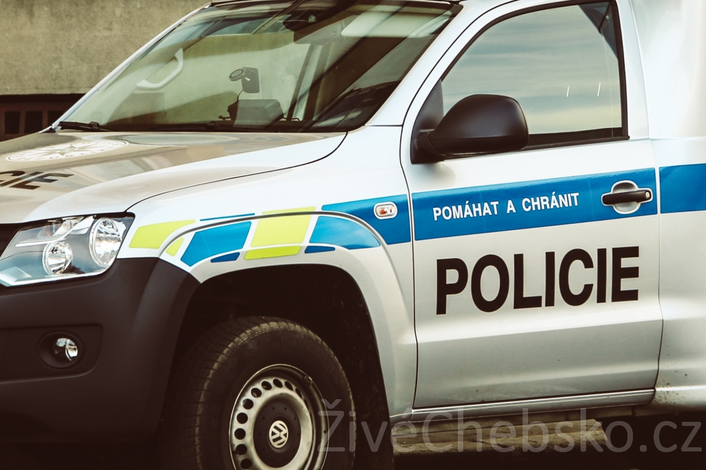 Policie ill malé na web