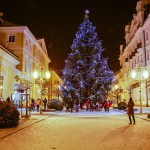 Ve-Františkových-Lázních-rozsvítili-vánoční-strom
