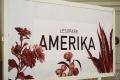Lesopark Amerika čeká změna