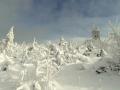 Sněhové krásy kolem Fichtelbergu - foto Jiří Pošmura