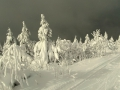 Sněhové krásy kolem Fichtelbergu - foto: Jiří Pošmura