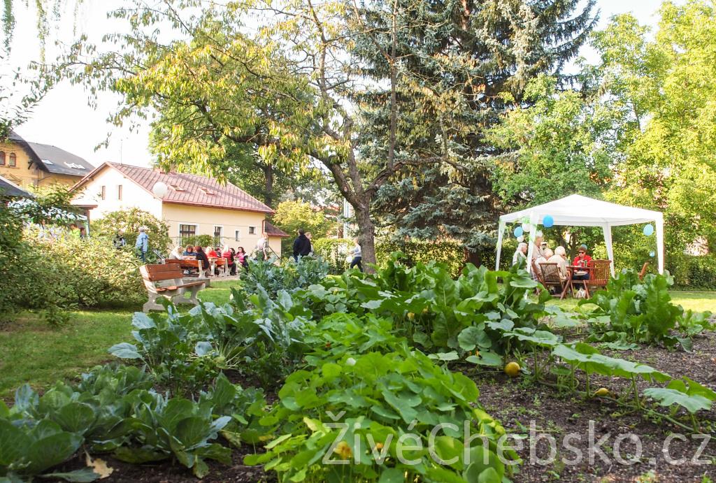 Komunitní zahrada je od pátku otevřená