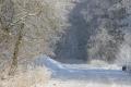 Zima na Chebsku ve fotogalerii